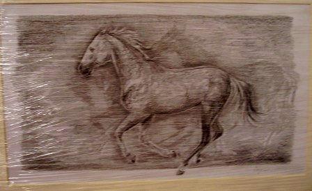 ostatní-kresby-koni (3)