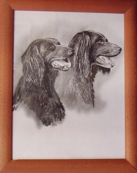 ostatní-kresby-psu (11)