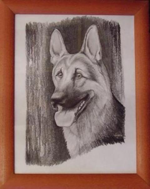 ostatní-kresby-psu (9)