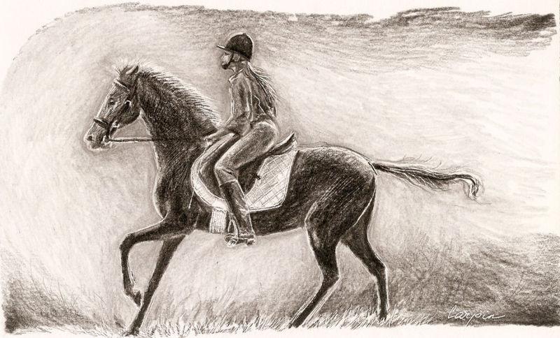 ostatní-kresby-koni (9)