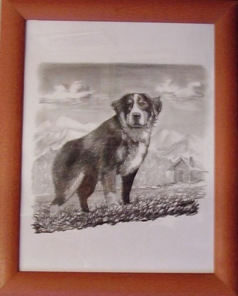 ostatní-kresby-psu (12)