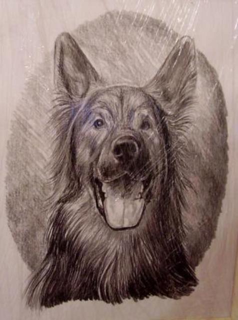 ostatní-kresby-psu (22)
