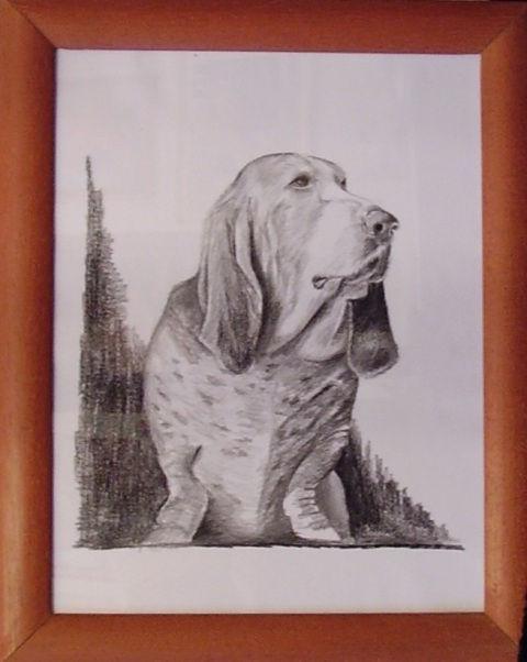 ostatní-kresby-psu (1)