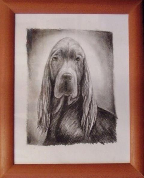 ostatní-kresby-psu (7)