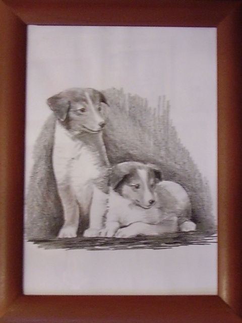ostatní-kresby-psu (15)