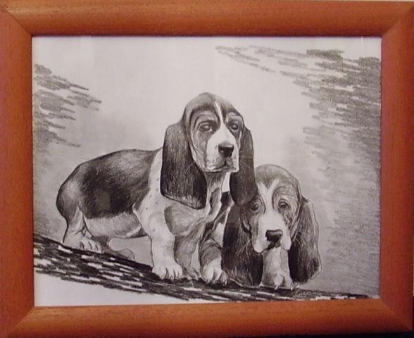 ostatní-kresby-psu (5)