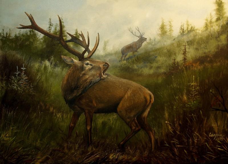 myslivost-Dva jeleni