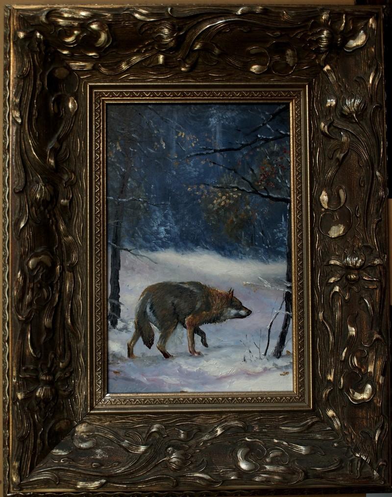 myslivost-Noční vlk
