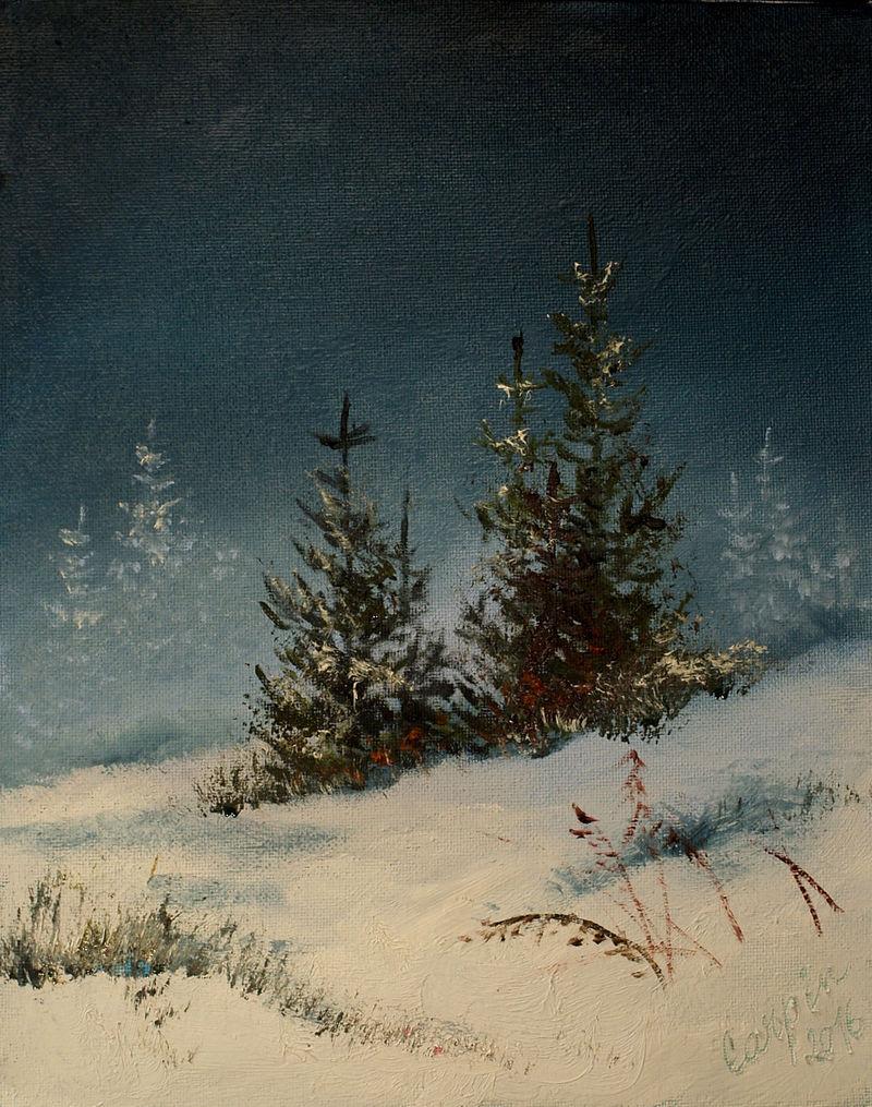 krajina-Smrčky pod sněhem