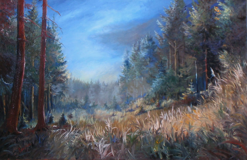 krajina-Lesní tráva